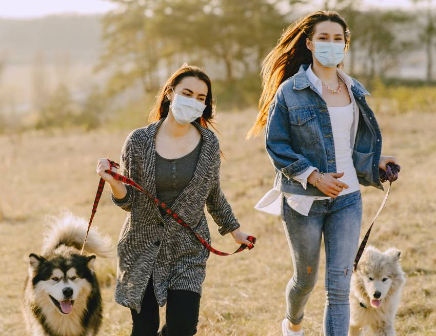 Two women wearing face masks and walking dogs
