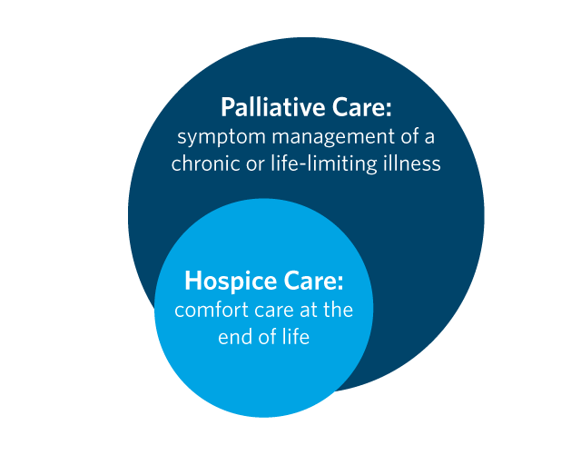 palliative care and hospice care