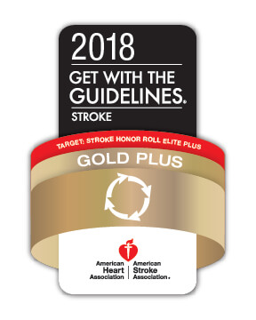 Get With the Guidelines Stroke Award