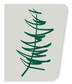 memorial tree program logo